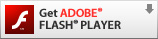 Get ADOBE&reg FLASH® PLAYER